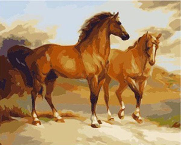 Schilderen op Nummer – Paarden