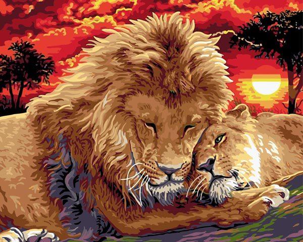 Schilderen op Nummer – Leeuwen