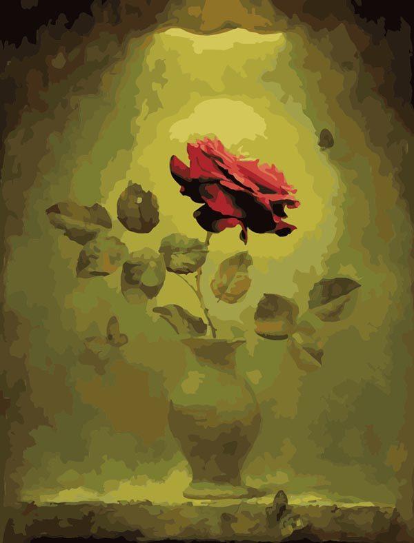 Schilderen op Nummer – Rode Roos