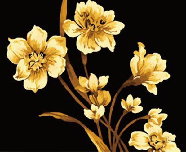 Schilderen op Nummer – Bloemen