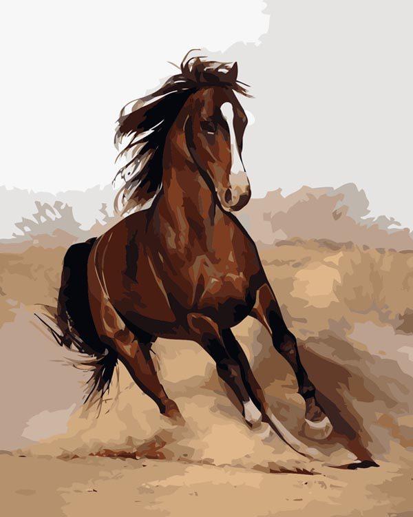 Schilderen op Nummer – Paard